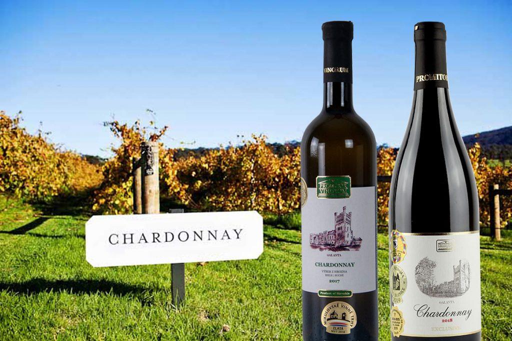 5 dôvodov, prečo milovať Chardonnay | regioWine